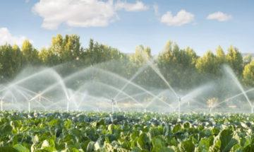 Prodotti per irrigazione a Salerno